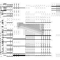 CORP NEON INDUSTRIAL FLF SHINA 2X18 W